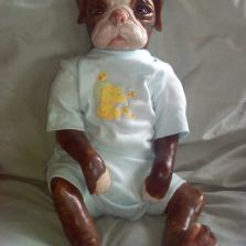 A Reborn Denise Pratt Pug sculpt to look like a brindle Bulldog my Grandmother-in-law once had.